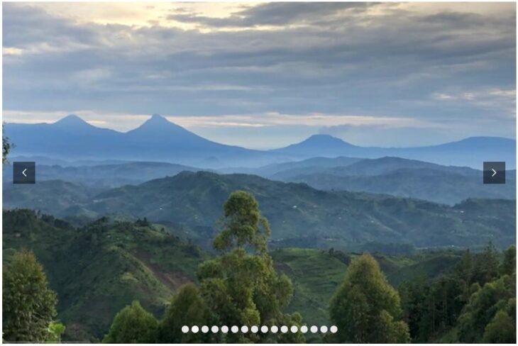 UGANDA - ON THE TRAIL OF THE MOUNTAIN GORILLAS 2